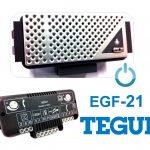 EGF 21 TEGUI